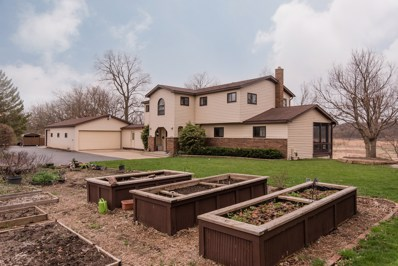 909 Nippersink Road, Spring Grove, IL 60081 - #: 10345467