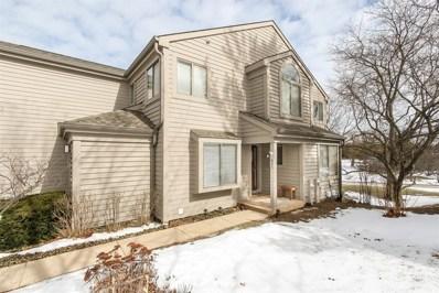 825 Shoreline Road, Lake Barrington, IL 60010 - #: 10345518