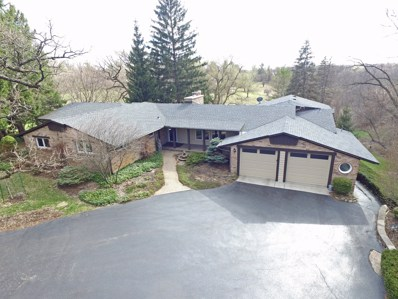 10 Green Pasture Road, Algonquin, IL 60102 - #: 10346013