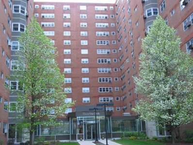 4950 N Marine Drive UNIT 312, Chicago, IL 60640 - #: 10346023