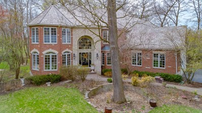 215 Crooked Tree Court, Naperville, IL 60565 - #: 10346569
