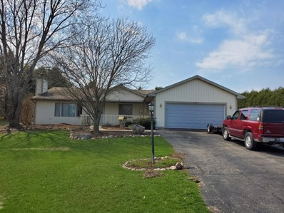 8707 Deer Trail Road, Spring Grove, IL 60081 - #: 10346880