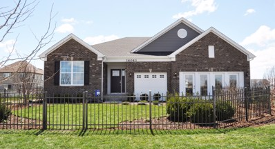 16052 S Selfridge Circle, Plainfield, IL 60586 - #: 10346893