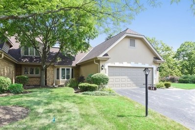 14 Pine Tree Lane UNIT 14, Burr Ridge, IL 60527 - #: 10347081