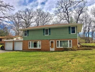 806 Hickory Road, Woodstock, IL 60098 - #: 10347154