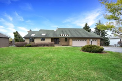 45 Deer Point Drive, Hawthorn Woods, IL 60047 - MLS#: 10347548