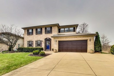 10S436  Dunham, Downers Grove, IL 60516 - #: 10347634