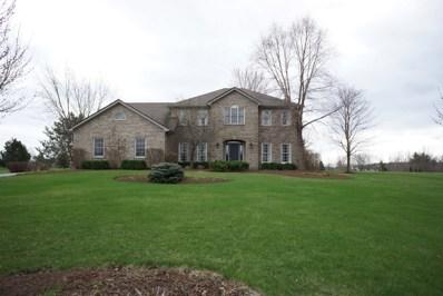1656 Spring Valley Drive, Elburn, IL 60119 - #: 10347699