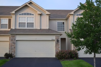 2256 Summerlin Drive UNIT 2256, Aurora, IL 60503 - #: 10348117