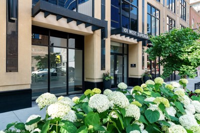 101 W Superior Street UNIT 1204, Chicago, IL 60611 - #: 10348123
