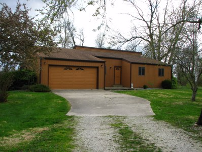 1485 Timber Lane, Camargo, IL 61919 - #: 10348132