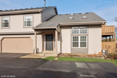 3S068  Timber UNIT 9-D, Warrenville, IL 60555 - #: 10348208