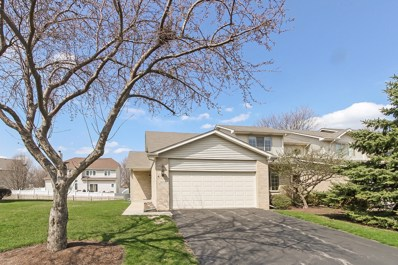 2035 Yellow Daisy Court, Naperville, IL 60563 - #: 10348543