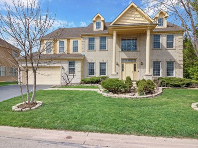 9 Shoal Creek Court, Lake In The Hills, IL 60156 - #: 10348829
