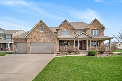 25002 Chalk Hill Circle, Plainfield, IL 60544 - #: 10349506