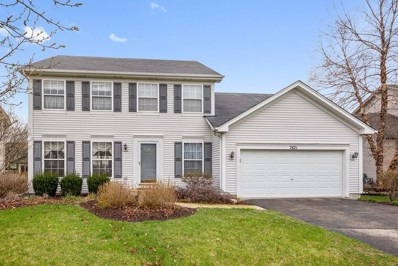 7421 Southworth Circle, Plainfield, IL 60586 - #: 10349550