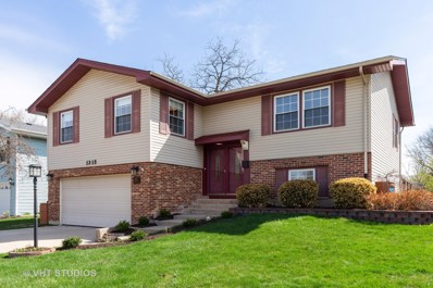 1315 Meyer Road, Hoffman Estates, IL 60169 - #: 10350057
