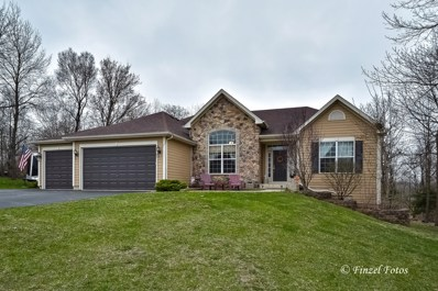 11121 Thrush Creek Drive, Richmond, IL 60071 - #: 10350314