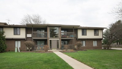 578 Somerset Lane UNIT 7, Crystal Lake, IL 60014 - #: 10350682
