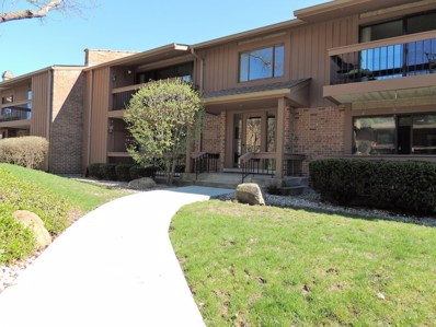 8098 Garfield Avenue UNIT 5-2, Burr Ridge, IL 60527 - #: 10350908