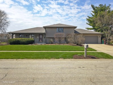 24416 S Rock Ridge Court, Channahon, IL 60410 - #: 10351189