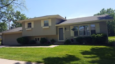 2421 62nd Street, Downers Grove, IL 60516 - #: 10351250