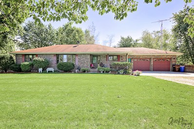 20603 Lembcke Road, Harvard, IL 60033 - #: 10351435