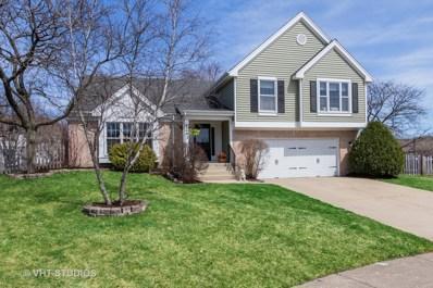 1243 N Sherwood Lane, Palatine, IL 60067 - #: 10351781