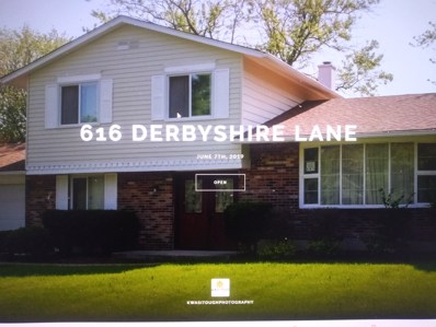 616 Derbyshire Lane, Bolingbrook, IL 60440 - #: 10351988