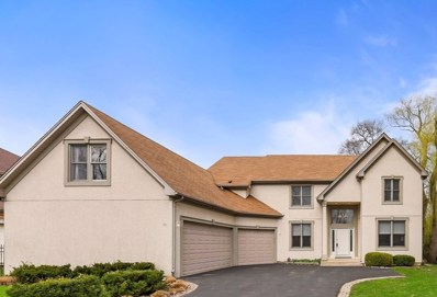 20 Arlyd Road, Buffalo Grove, IL 60089 - #: 10352652