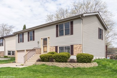 19938 S Sycamore Drive, Frankfort, IL 60423 - MLS#: 10353439