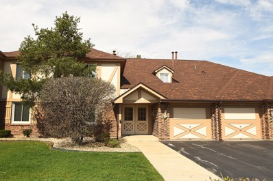 15600 Orlan Brook Drive UNIT 215, Orland Park, IL 60462 - #: 10353734