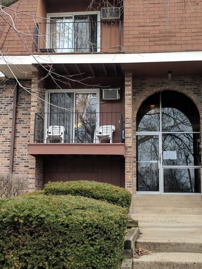 620 Mesa Drive UNIT 212, Hoffman Estates, IL 60169 - #: 10354093