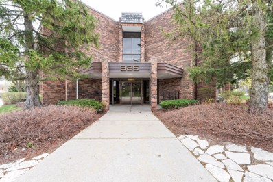 925 Spring Hill Drive UNIT 318, Northbrook, IL 60062 - #: 10355008