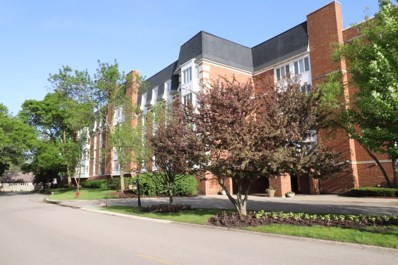 100 Lake Boulevard UNIT 638, Buffalo Grove, IL 60089 - #: 10355369