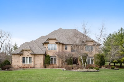 40322 N Golden Eagle Court, Antioch, IL 60002 - #: 10355505