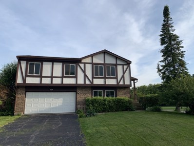 101 Jonquil Court, Rolling Meadows, IL 60008 - #: 10355794