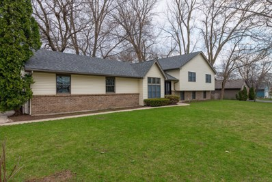 13234 Hickory Lane, Woodstock, IL 60098 - #: 10355953
