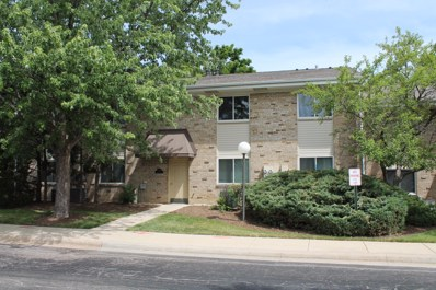 1755 Robin Walk Lane UNIT A, Hoffman Estates, IL 60169 - #: 10356185