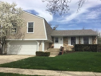 204 Continental Lane, Schaumburg, IL 60194 - #: 10357372
