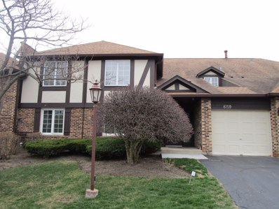 6159 Brookside Lane UNIT D, Willowbrook, IL 60527 - #: 10358304