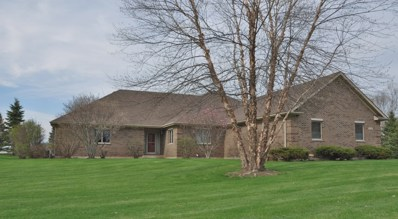5124 Tall Oaks Drive, Ringwood, IL 60050 - #: 10358513