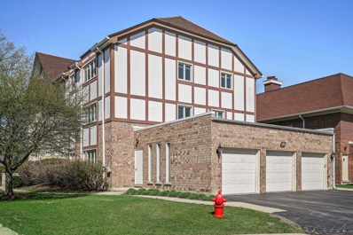 660 Ballantrae Drive UNIT B, Northbrook, IL 60062 - #: 10358552