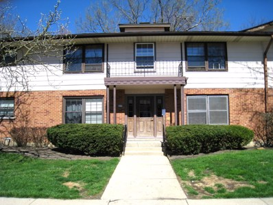217 Washington Square UNIT D, Elk Grove Village, IL 60007 - #: 10358606