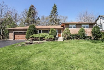 104 Elm Street, Prospect Heights, IL 60070 - #: 10359156