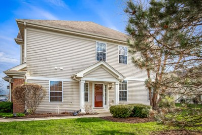 5462 Wildspring Drive, Lake In The Hills, IL 60156 - #: 10360058
