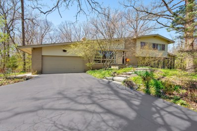 1390 Woodland Lane, Riverwoods, IL 60015 - #: 10360133