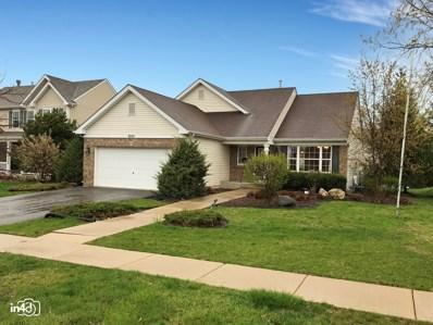 8007 Shady Oak Road, Joliet, IL 60431 - #: 10360227