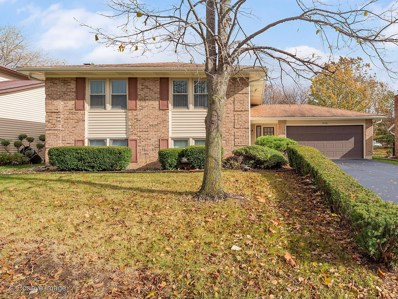 6729 Plymouth Road, Downers Grove, IL 60516 - #: 10360298