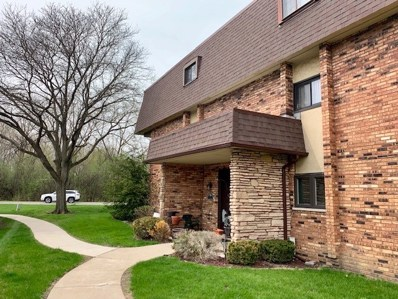 9197 North Road UNIT B, Palos Hills, IL 60465 - #: 10360896
